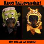 Happy Halloweener!