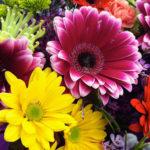 Spring flowers DIY