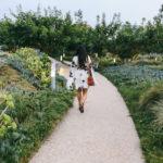 Lookbook: Santa Monica Garden